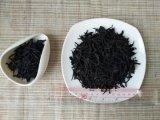 中国の茶東洋の美の中国の紅茶