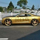 金の顔料のペンキの自動車コーティングの芸術はカラリング真珠の粉を制作する