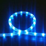 2017 신제품 LED 밧줄 유연한 지구 빛 SMD2835 세륨 원격 제어 LED 밧줄 빛