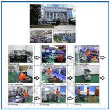 Imprimante à jet d'encre continue de Duel-Tête de numéroteur automatique pour la boîte à gelée (EC-JET910)