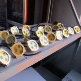 3With6W黄銅DC12V LEDの水中照明