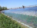 フィルムの使用に根おおいをする農業のためのPE/PVC黒いMasterbatch