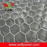 Âme en nid d'abeilles en aluminium