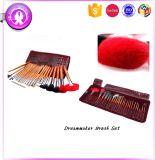 Brosse de lecture cosmétique colorée du cheveu 24PCS avec le sac d'unité centrale