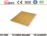 Comitato di parete del PVC del soffitto del PVC per la decorazione interna