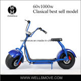 1000W盗難防止装置が付いている脂肪質のタイヤの移動性のスクーターのHarley様式の電気オートバイ