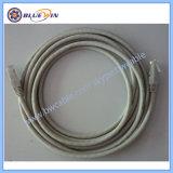 Mann zum weiblichen Ethernet-Kabel CAT6