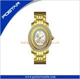 Señora popular reloj del producto del diamante negro al por mayor del laminado