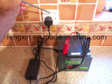Personalizar 12V/24V/36V/48V/60V/72V Cargador de batería de plomo ácido Cargador de SLA