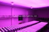 Pared de la colada de la luz de la etapa de la barra de Vello LED (LED Slimbar1661)
