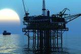 L'usine auxiliaire chimique de CMC d'agent de liquide Drilling fournit directement