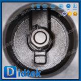 Válvula de verificación empernada acero inoxidable de oscilación del capo de Didtek