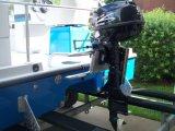 Подвесной двигатель F5ETL 5HP электрический