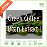 最もよい品質のバルク粉の緑のコーヒー豆のエキス50%、60%