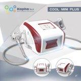 Cryolipolysis portable de la machine avec 4 poignées de perdre de poids rapide