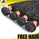 100つの未加工異なったタイプの巻き毛の赤い織り方のビルマ人の毛