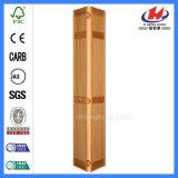 Dobro liso porta deDobramento interior moldada (JHK-B04)