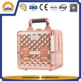 携帯用装飾的なボックスおよび軽量の美のケースの虚栄心ボックス(HB-6566)
