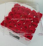 Presente do dia de Natal do vaso da decoração da flor