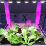 Chips LED diferentes em um Len Grow Bar