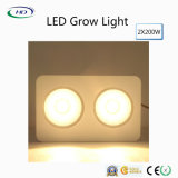Commercial Cultivation를 위한 크리 말 Chips와 가진 고전 Type적인 2*200W LED Grow Light