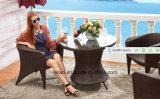 Insieme del vimine del patio, mobilia del rattan, sofà esterno del rattan impostato (LL-RST011)