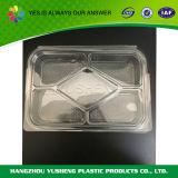 De rechthoekige Verdeelde Duidelijke Container van Packaigng van het Voedsel