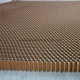 Âme en nid d'abeilles de papier intérieure de porte
