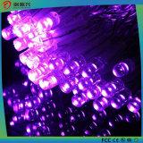 Luz feericamente da corda do diodo emissor de luz
