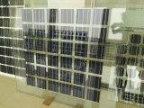 30V поли двойная стеклянная панель солнечных батарей BIPV 240W- 260W