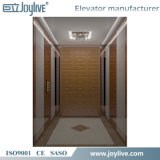 Levage à la maison d'ascenseur de bonne qualité de la Chine petit pour des handicapés