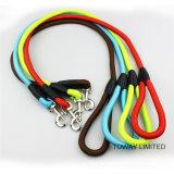 Ligne de qualité en nylon pour animaux de compagnie Strong Zinc Alloy Buckle Dog Lead