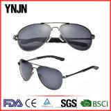 Горячие солнечные очки стекел людей сбывания UV400 пилотные (YJ-F8545)
