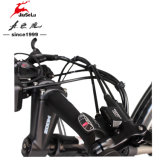 700cの白くか黒いアルミ合金フレーム36Vの電気バイク(JSL033A-4)