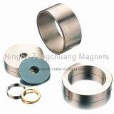 De Magneten van de zeldzame aarde met Verschillend Plateren