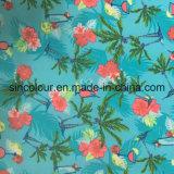Tecido de impressão Palm 80%20%Spandex tecido de nylon para Sexy Bikini