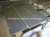 los paneles compuestos del panal de la piedra del granito de 7m m movidos hacia atrás con los paneles de aluminio del panal