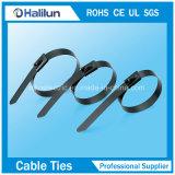 Band van de Kabel van het Slot van de Bal van het Roestvrij staal van de Verf van de Leverancier van China de Volledige Epoxy met 10*350mm/12*350mm