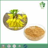最もよい販売法EP標準Fructus Forsythiaeのエキスの低価格