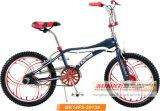 20 '' bicicletta di riciclaggio di stile libero della cobra BMX (MK14KB-20130)