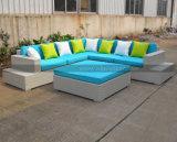 Mtc074屋外の藤のテラスのソファーの一定の全天候用柳細工の家具