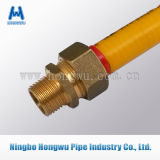 Boyau en métal de l'acier inoxydable Dn12-Dn32 pour le gaz naturel