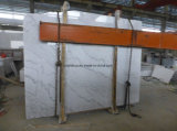 China Chiva White Marble with Grey Vines for Slab / Tile / Conter Topo
