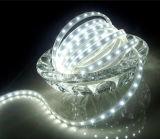 60LEDs/M 5050 백색 유연한 LED 지구 빛