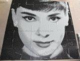 Künstlerisches Mosaik, Mosaik-Wandkunst-Mosaik-Abbildung (HMP882)