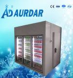 Koude Zaal voor Bevroren Voedsel met Goede Conditon