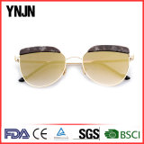 2017 Lunettes de soleil New Popular High Fashion Man Women