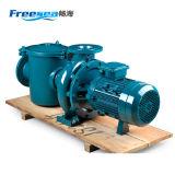 Qualitäts-Roheisen-elektrische versenkbare Abwasser-Wasser-Pumpe