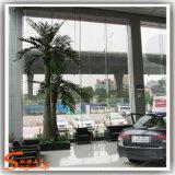 공원 또는 호텔 훈장을%s 인공적인 코코야자 나무