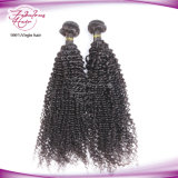 Venda por grosso não transformados Kinky Afro Cabelo encaracolado Extensions pacotes de cabelo indiano